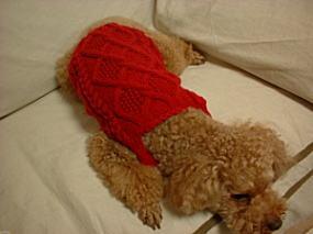 1-brun-knit-1-2-1.jpg