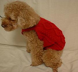 1-brun-knit-1-2-2.jpg
